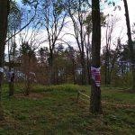 Рушники на деревах в  Монастирі. / Фото Ігоря Тимоця.